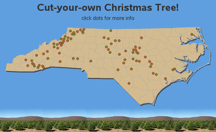 Cut-Your-Own Christmas Tree Farms in North Carolina (NC)